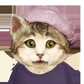 KATE CAT